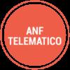 ANF-TELEMATICO-ICON